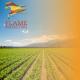 Alternative Arable Crops