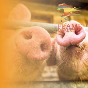 pork diversification
