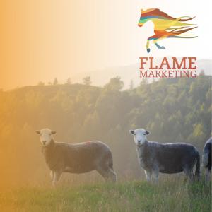 meat farm diversification